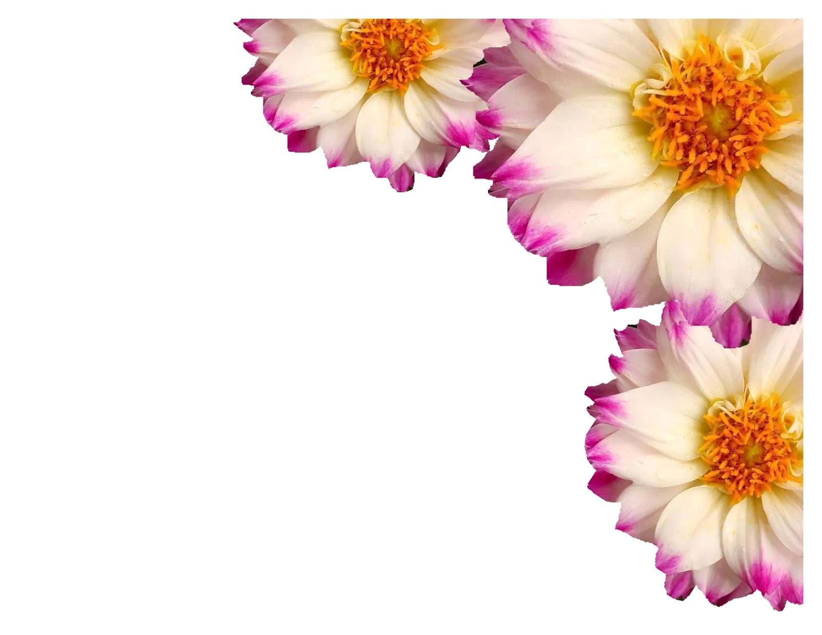 flower wallpaper floral border - photo #28