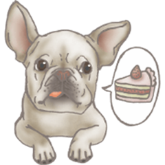 Foodie French Bulldog's daily life