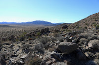 View southwest toward Ryan Mountain from the flank of Negro Hill, Joshua Tree National Park