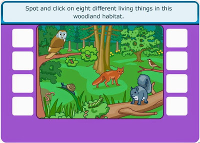 http://www.sciencekids.co.nz/gamesactivities/foodchains.html