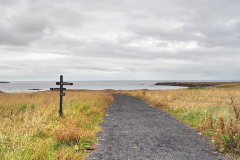 Promenade sur l'île de Viðey à Reykjavik