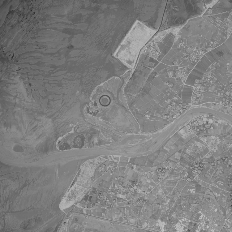 スゴログ 盤州干潟 浸透実験池