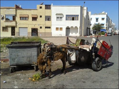 Eboueurs d'Agadir
