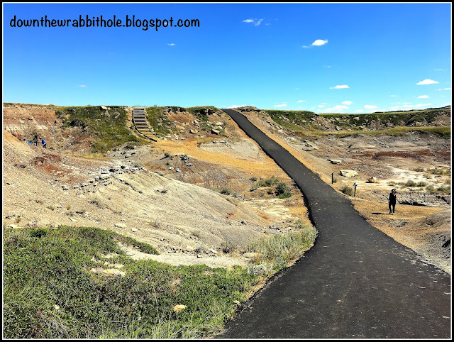 A pathway in the Royal Tyrell Museum's Badlands Interpretive Trail
