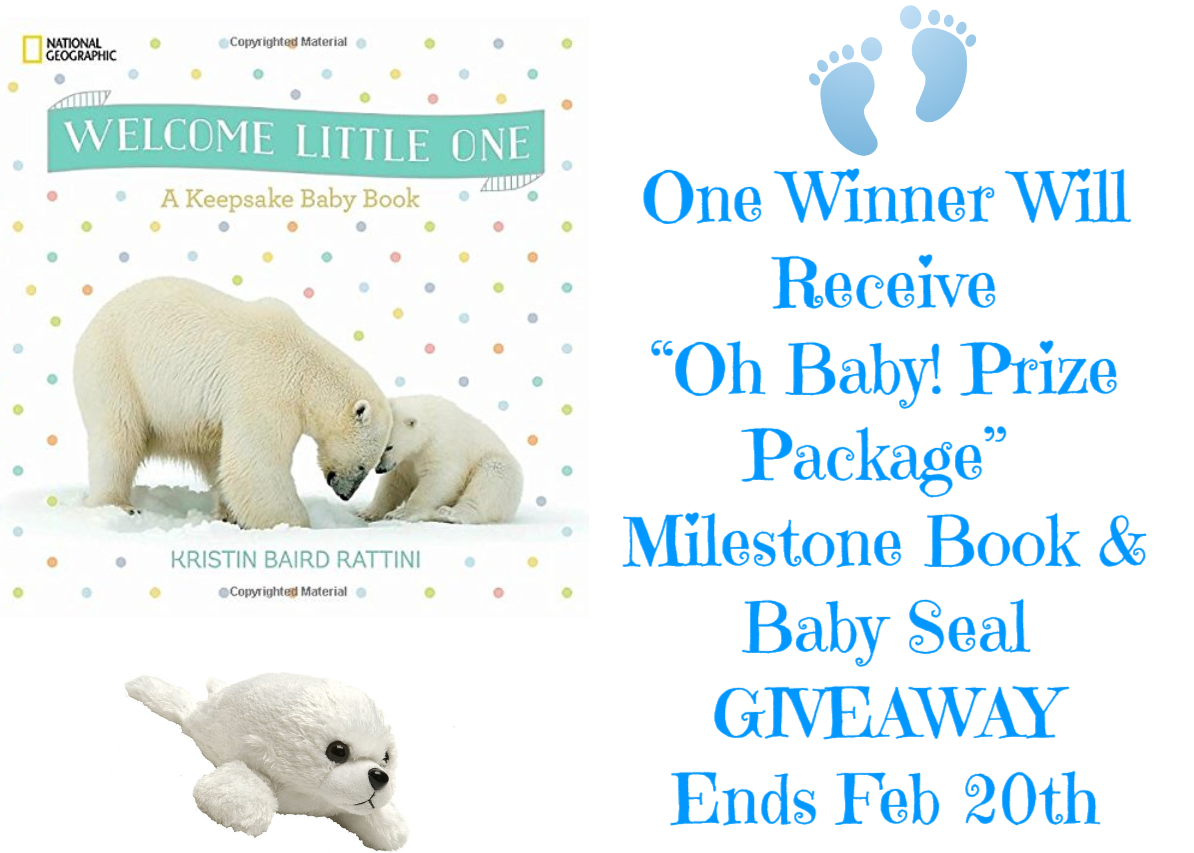 maria s space oh baby prize pack baby s milestone book giveaway