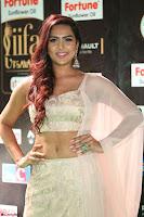 Prajna Actress in backless Cream Choli and transparent saree at IIFA Utsavam Awards 2017 0077.JPG