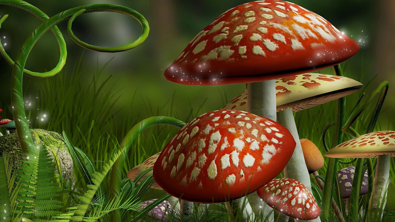Hd wallpapers amazing 3d hd wallpapers - Mushroom 3d wallpaper free download ...