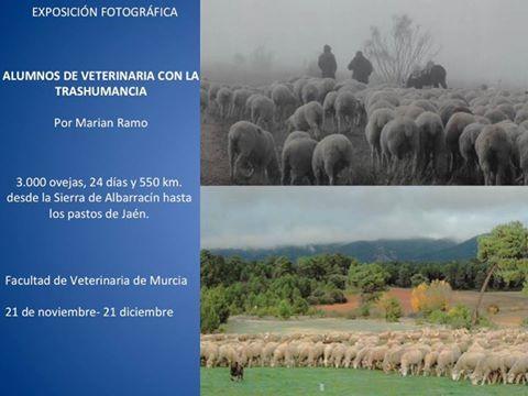 """Exposición: """"Alumnos de Veterinaria con la Trashumancia""""."""