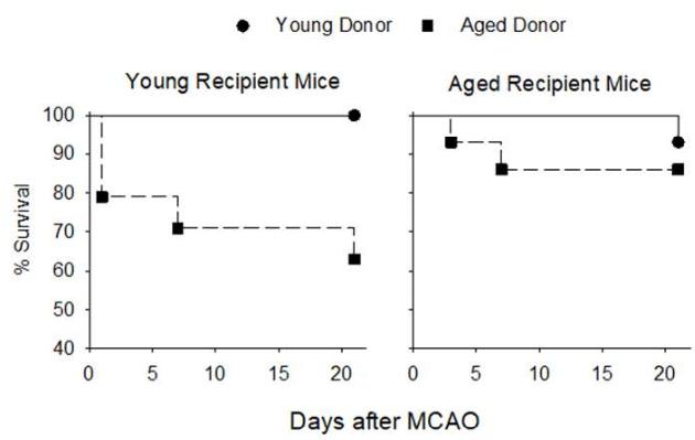 図:腸内細菌叢の若さと脳卒中生存率