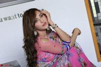Angela Krislinzki Rogue Movie Fame Telugu Actress in Saree Backless Choli 005.JPG