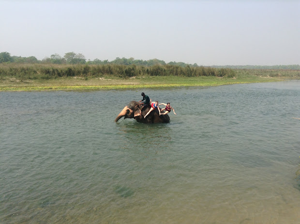 Global Citizenship Project Riding With Elephants In Nepal
