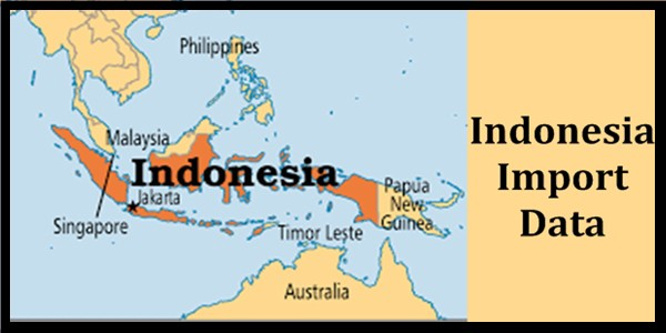 Why Indonesia leading a successful import business?