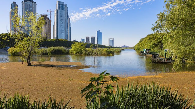 Visitar os parques e reservas de Buenos Aires no mês de fevereiro