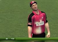 Big Bash League Mini-Patch Gameplay Screenshot 3