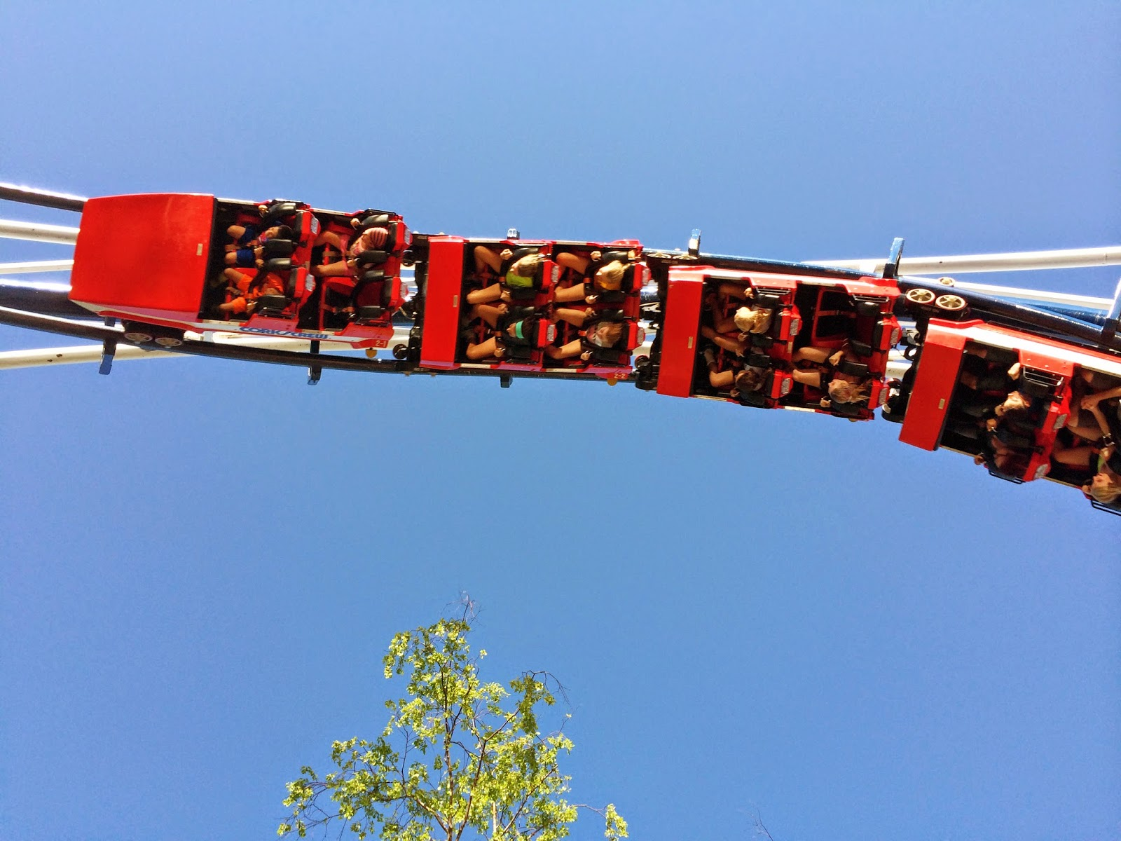 Roller Coaster Cedar Point