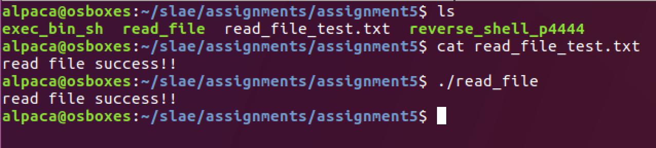 kphongag's blog: Assignment 5: Shellcode Analysis