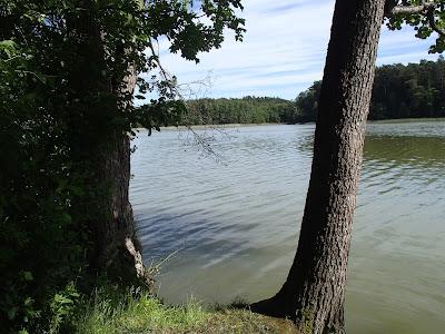 Mazury, żeglowanie po Mazurach, Jezioro Nidzkie, stanica wodna Czaple, Przylądek Wisielców