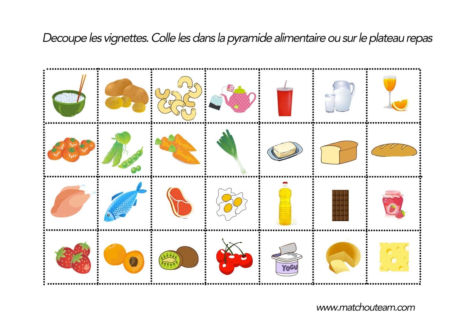 Sciences Les Aliments