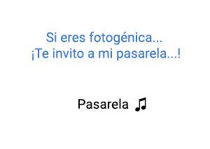Dálmata Pasarela significado de la canción.