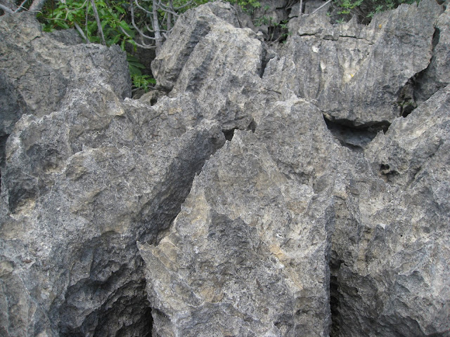 sharp rocks in tsingy in Ankarana National Park