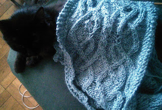 A blue bulky-weight scarf with a Celtic-knot pattern.  Laying underneath the scarf is a black cat, the cat's head is visible.
