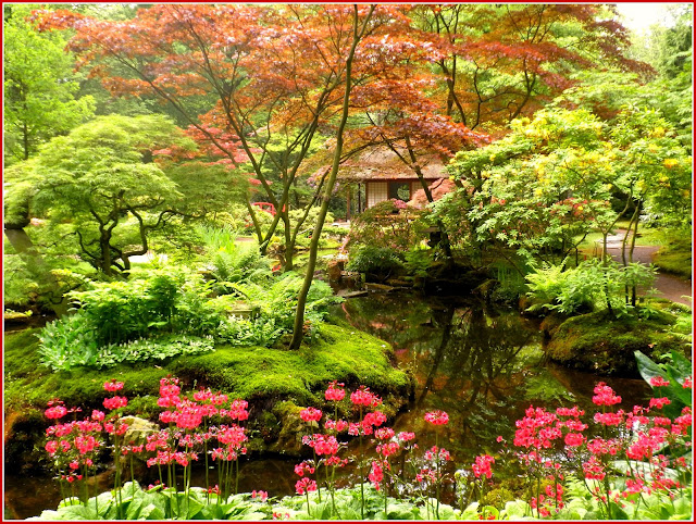 charming zen garden | Japanese Zen Garden: Japanese Garden - The Hague