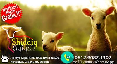 aneka olahan kambing domba