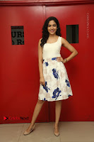 Actress Ritu Varma Stills in White Floral Short Dress at Kesava Movie Success Meet .COM 0156.JPG