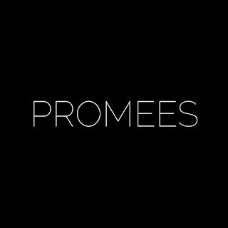 http://www.promees.pl/
