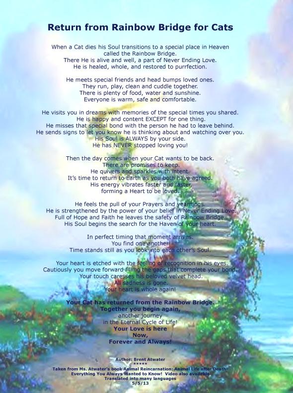 Cats Rainbow Bridge Poem l cat heaven l cat death l Pet ... Rainbow Bridge