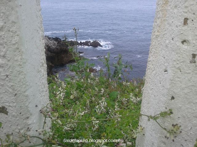 acantilados-perlora-asturias