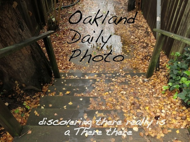 Oakland Daily Photo