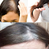 Home Remedy For White And Damaged hairs   گرتے اور سفید بالوں کے لیے