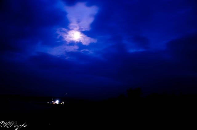 Moonlight-night-лунна-нощ