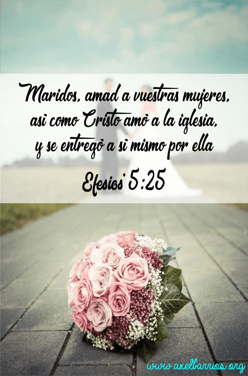 Versiculos De La Biblia De Animo: Versículos Bíblicos Sobre El Matrimonio