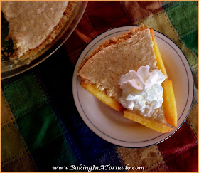 No Bake Spiced Peach Pie: Fresh peaches spiced with a kick, blended into a creamy center and served in a cookie crust. No need to heat up the oven, this pie is no bake. | Recipe developed by www.BakingInATornado.com | #recipe #pie #dessert