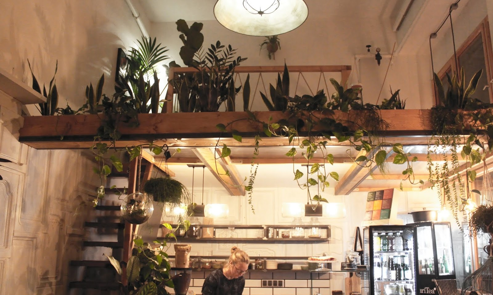 THE GREENS COFFEE AND PLANTS – ZIELONA OAZA W MITTE