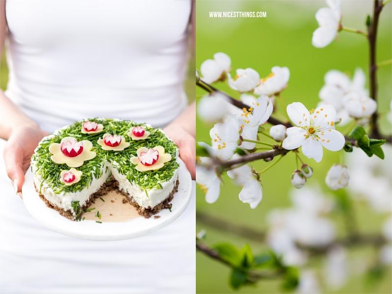 Frischkäse Torte herzhafter Cheesecake Rezept