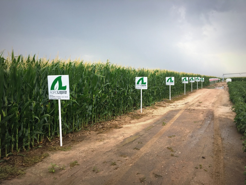 Land of liquid irf plots in co - Profitable crops small plots ...