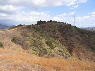 View east toward Summit 1212 from South Hills Trail, Glendora
