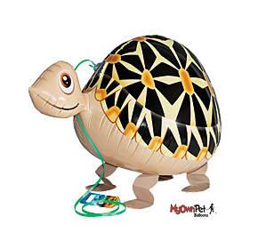 Balloon Tortoise