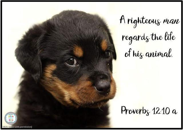 https://www.biblefunforkids.com/2020/04/respect-your-animal.html