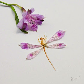 21-Lim-Zhi-Wei-Limzy-Paintings-using-Flower-Petals-www-designstack-co