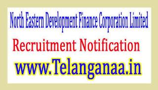 North Eastern Development Finance Corporation LimitedNEDFI Recruitment Notification 2017