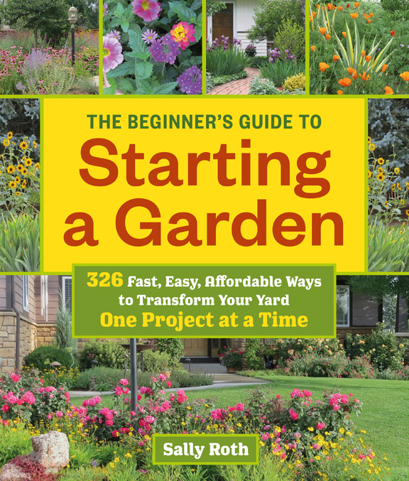 Three Dogs In A Garden The Beginner S Guide To Starting A Garden