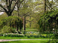 Jardín Botánico del Bronx