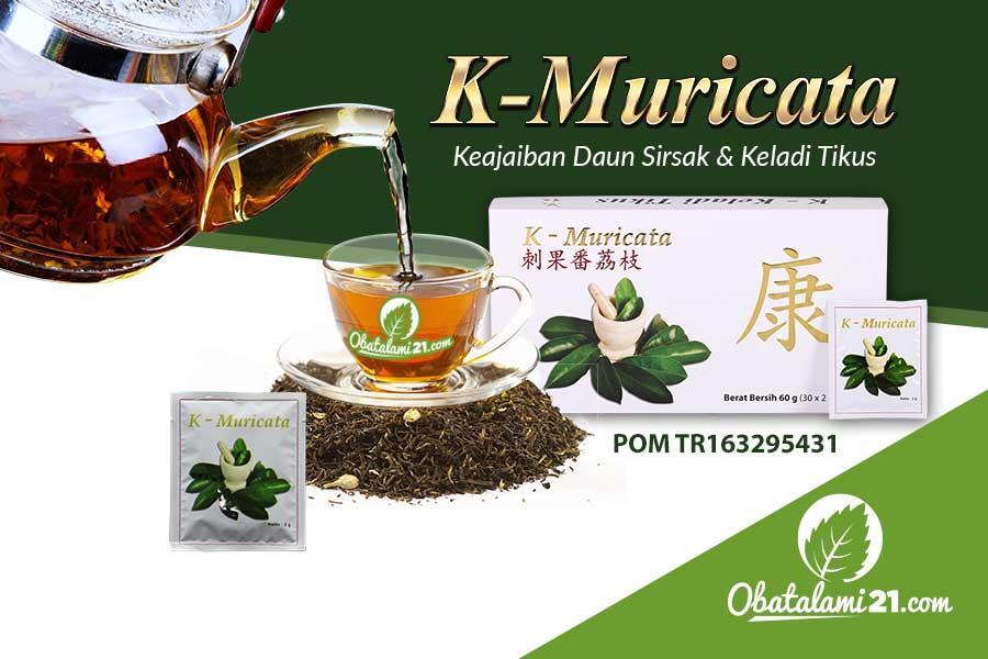 Obat Herbal Kanker Payudara K-Muricata Alami