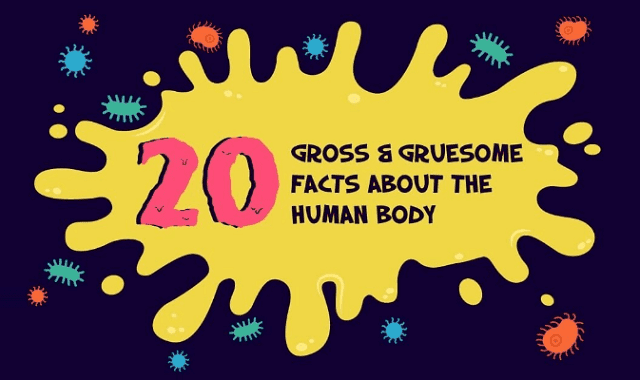 20 Gross & Gruesome Facts About The Human Body