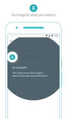 Incognito Window di Google Allo