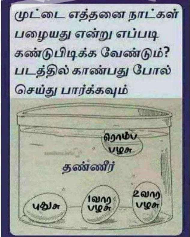 முட்டை எவ்வளவு நாள் பழையது என கண்டுபிடிக்க, Koli muttai palayadha, pudhiyadha ena kandupidikka test seivadhu eppadi. Tips and Tricks in Tamil, Egg life testing, Egg quality check method